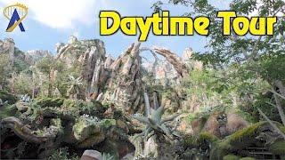 Download Daytime look at Pandora - The World of Avatar at Disney's Animal Kingdom Video