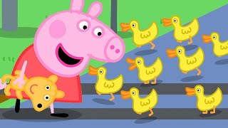 Download Peppa Pig English Episodes | Peppa Pig Spots Ducks Ahead Of The Train! | Peppa Pig Official Video