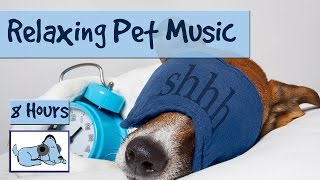 Download 8 HOURS OF RELAX MY DOG MUSIC!! Longest Video Yet! Relaxing Pet Music, Soundsweep 🐶 RMD03 Video