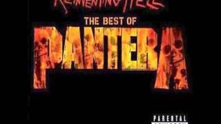 Download Cemetery Gates - Pantera (HQ Audio) Video