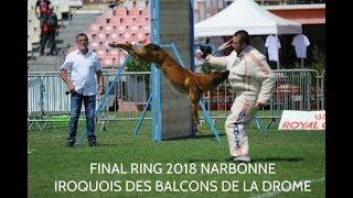 Download Iroquois des Balcons de la Drome - Final ring 2018 Narbonne Video