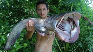 Download Yummy BBQ 5Kg Big Fish - Cooking Big Fish on the Rock Eating Delicious Video
