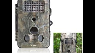 Download Review of: Wildlife/surveillance/trail outdoor camera by Blusmart Video