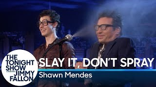 Download Slay It, Don't Spray It with Shawn Mendes Video