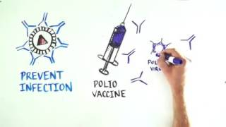 Download Vaccines 101 What will it take to develop an HIV vaccine Video