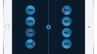 Download Mathe Verstehen - Das kleine Einmaleins Video