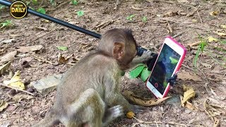 Download What the baby doing? who know the all there baby? Angkor Daily 722 Video