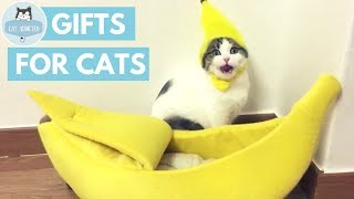 Download 10 Cool Gifts Your Cat Wants Video