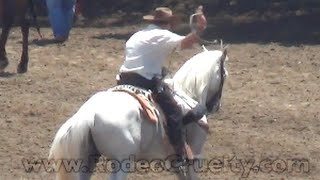 Download Jackass Whips Horse at Salinas Rodeo Video
