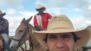 Download Roy está indo embora para São Paulo trabalhar novamente no Campeonato da Ekip Rozeta Video