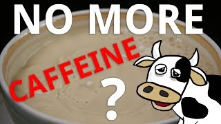 Download What Happens if You Stop Drinking Caffeine? Video