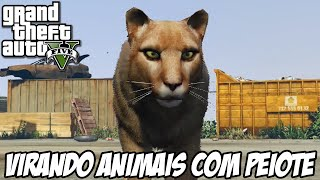 Download GTA V - VIRANDO PUMA, VEADO, GATO E MAIS!! EASTER EGG PEIOTE FODA Video