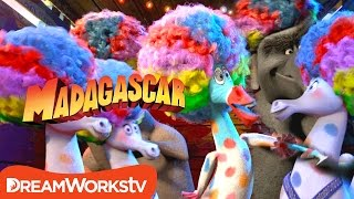 Download Afro Circus Remix | MADAGASCAR 3 Video
