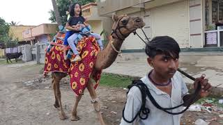 Download My First camel ride - Aarya Video