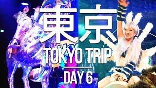 Download TOKYO TRIP 🇯🇵 - Day 6 - Akihabara Otaku Culture and Robot Restaurant in Shinjuku! Video