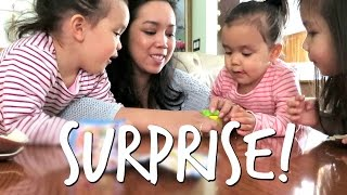 Download A SURPRISE IN THE BOX! - April 27, 2017 - ItsJudysLife Vlogs Video