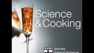 Download Bakistry: The Science of Sweets | Lecture 9 (2012) Video