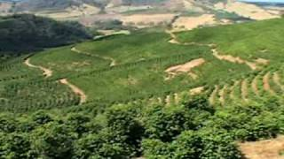 Download Coffee: Where It Comes From-Part One. Video