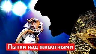 Download Живодёры просят Путина о поддержке Video