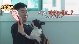 Download 이 이야기는 아무튼 학대에 관한 이야기입니다 ㅣ In A House Where An Abused Dog Cries Every Day.. *Plot Twist* Video