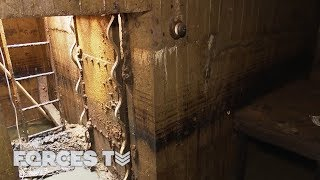 Download When You Find A WW2 Bunker... In Your Garden! | Forces TV Video