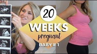 Download 20 WEEKS PREGNANT UPDATE // OMG HIS FACE in 4D HD Live! 20 week Anatomy scan Video