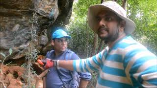 Download Hike To Danigala Sri Lanaka With Crew lk Video