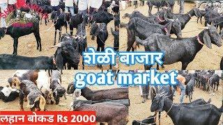 Download शेळी बाजार/Goat market Video