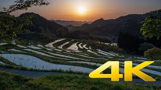 Download Oyama Rice Terraces - Chiba - 大山千枚田 - 4K Ultra HD Video