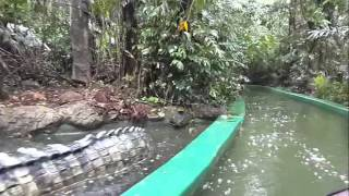 Download River Safari Ride- Safari World - Bangkok Video