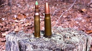 Download Why the 7.62x39mm is no good for SHTF Video