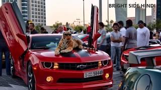 Download दुबई का सबसे आमिर बच्चा (उम्र 15 साल) || Lives Of The Rich Kids Of Dubai | دبي الغنية والهوايا Video