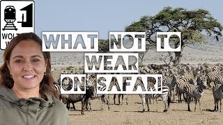 Download What Not to Wear on a Safari Video