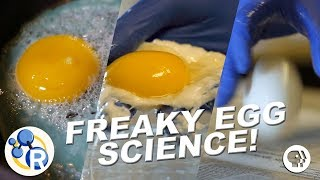 Download 3 Egg-cellently Weird Science Experiments Video