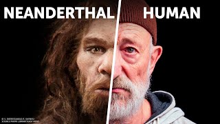 Download Who Would Win: Human vs Neanderthal Video