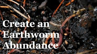 Download How to create an Abundance of Earthworms in your Garden Video