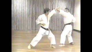 Download Kanazawa Hirokazu. Kyogi kumite. 1994. Video
