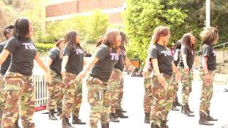 Download FISS 2013 HIGH SCHOOL STEP TEAM Video