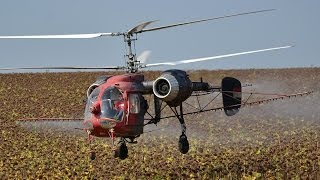 Download Kamov Ka-26 (HA-MPB) agricultural flight near Gadány, Hungary Video