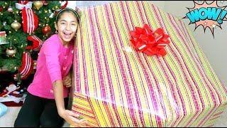 Download Opening a Giant Christmas Present What I got for Christmas B2cutecupcakes Video