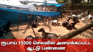 Download Low Cost 💚Shed For 100 Goats| குறைந்த செலவில் ஆட்டு பண்ணை கொட்டகை அமைப்பது எப்படி..! Video