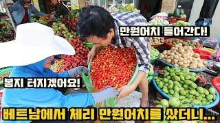 Download 베트남에서 체리 만원어치를 샀더니... 헐ㄷㄷ Video