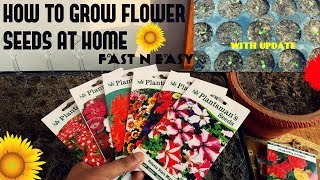 Download How To Grow Flower Seeds Fast (With Update) Video