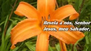 Download HARPA CRISTÃ - 88 - REVELA A NÓS, SENHOR.wmv Video