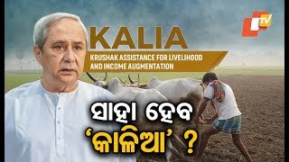 Download Will farmers in the State be able to avail the KALIA scheme Video