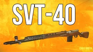 Download WW2 In Depth: SVT-40 Rifle Review (Call of Duty: WWII) Video
