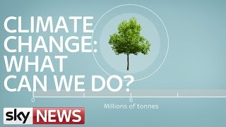 Download Climate Change: What Can We Do? Video