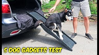 Download 5 Dog Gadgets Put to the Test - Part 7 Video
