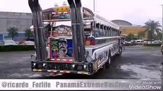 Download Bus ingratos💪 Video