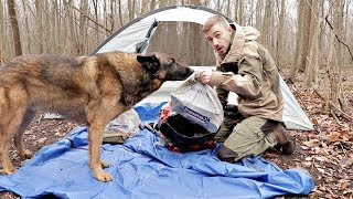 Download 24h Walmart Camping/Survival Challenge $500 Spent on Walmart Camping Gear, Camping with my Dog Video